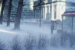 blizzard-bus-stop.jpg